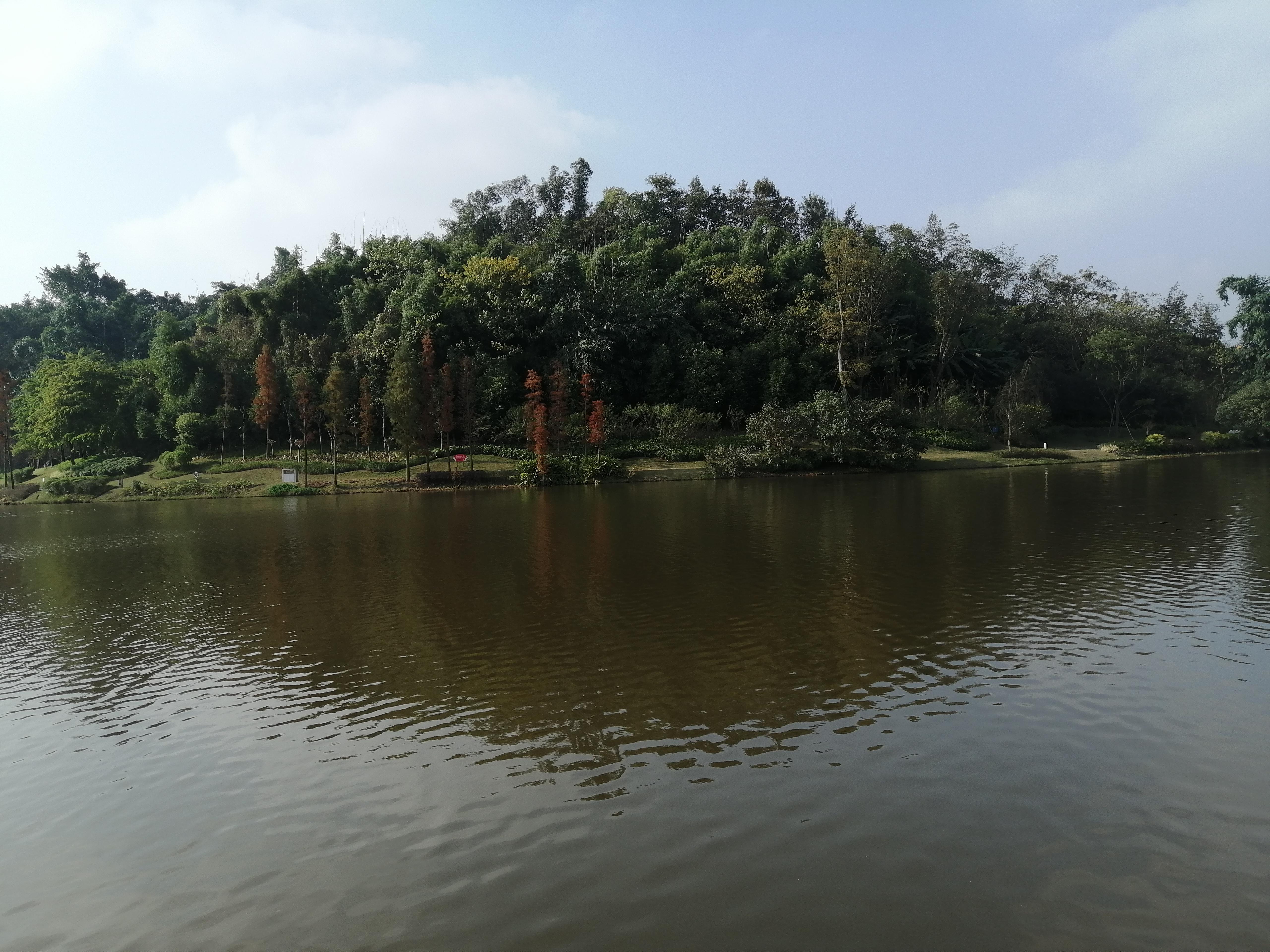 卧龙 景色 公园