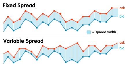 What is a Spread in Forex Trading?