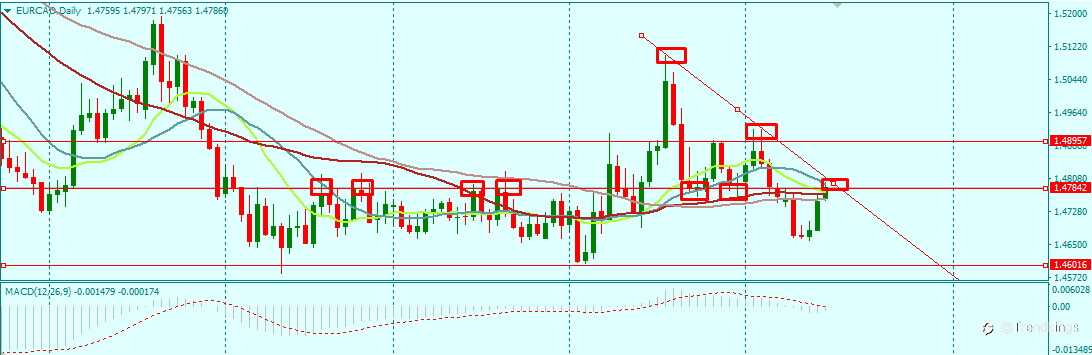 EURCAD DAILY HITS A DECISION ZONE FOR THE WEEK 16/8